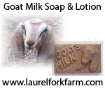 Goat Milk Soap & Lotion